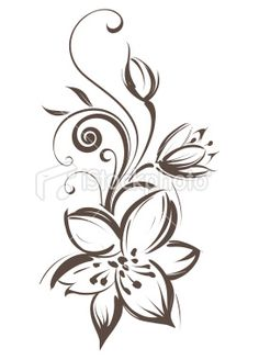 Vector flower isolated on white background- Vector flower isolated on white background Lily Royalty Free Stock Vector Art Illustration - Tiger Lily Tattoos, Lily Flower Tattoos, Mommy Tattoos, Flower Tattoo Drawings, Love Tattoos, Body Art Tattoos, Tatoos, Alas Tattoo, Swirl Tattoo