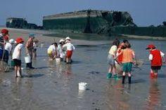 """Résultat de recherche d'images pour """"enfants à marée basse"""""""