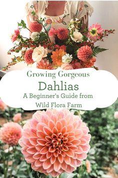 Cut Flower Garden, Cut Garden, Flowers For Cutting Garden, Autumn Flowers Garden, Summer Flowers To Plant, Flower Gardening, Flora Farms, Growing Dahlias, Do It Yourself Inspiration