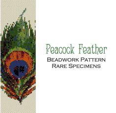 Peacock Feather Peyote Stitch Beadwork Pattern  by RareSpecimens Peyote Beading Patterns, Loom Bracelet Patterns, Seed Bead Patterns, Beaded Jewelry Patterns, Loom Beading, Stitch Patterns, Beaded Cross Stitch, Peyote Stitch, Seed Bead Flowers