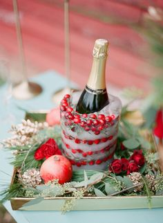 Frozen Cranberry Champagne Bucket Photography by Shannon Duggan Photography