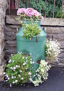 painted milk cans flower pots .maybe copper or black for front entry Metal Milk Jug, Old Milk Jugs, Painted Milk Cans, Flower Pots, Flowers, Garden Art, Garden Junk, Garden Inspiration, Container Gardening