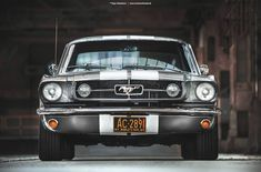 1965 Ford Mustang Coupe - Shot 8 by AmericanMuscle Ford Mustang Shelby Gt500, 2015 Mustang, Mustang Cobra, Ford Mustang Fastback, Classic Mustang, Ford Classic Cars, Jaguar Cars, Pony Car, Car Wheels