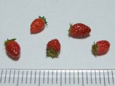 Strawberries in Japanese, but lots of photos (Google Chrome will translate)