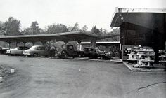 Logan's Morning Star Dairy Drive-In, Alton, IL. 1963 Now i'm craving a Redbird Special !