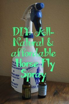 With three horses I've started to feel like all I do during the summer is go to the feed store and buy fly spray. Every time I just stand there with eyes glazed over from all the choices. Wat…