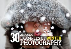 30 Amazing Winter Photography Examples for Inspiration...If only I didn't live where the chance of snow is 0%
