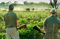 Adventure Holidays in South Africa | Vacations | Multi-Day Trips - Dirty Boots Adventure Holiday, Adventure Tours, Greatest Adventure, Kruger National Park, Outdoor Recreation, Walking Tour, Rafting, Beautiful Beaches, Day Trips