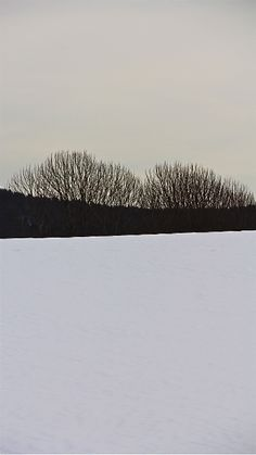 By Åse Margrethe Hansen, 2013 Minimalist Photography, White Photography, Nature Photography, Art Et Illustration, Illustrations, Landscape Photos, Landscape Art, Black White Photos, Black And White