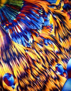 Magnesium sulfate crystals