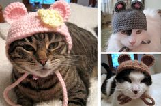 bonnet_crochet_chat