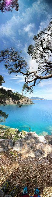 Likya Yolu - Der Lykische Weg - The lykian Way - Turkey - Türkei - Flowers - Close ups - Blumen - Nahaufnahme - Rocks - Stones - Beach - Strand - Felsen - Schildkröten - Raupen - Turtles - Caterpillars