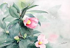 watercolour artist ; Tatsuo Shibuya