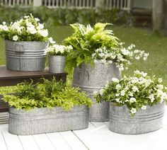Galvanized metal tubs as planters