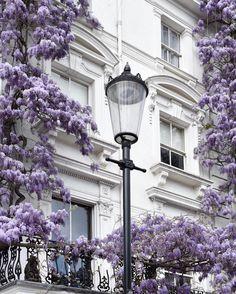Notting Hill London Lavender Aesthetic, Purple Aesthetic, Notting Hill London, Beautiful Homes, Beautiful Places, Photos Voyages, Architecture, Belle Photo, London England