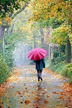 Walk in the Autumn rain …