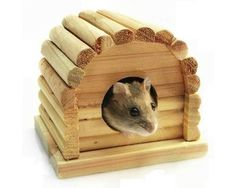 New Natural Wooden Dome Hamster House Toys for Hamster 10 5cm x 10cm x 9cm H | eBay