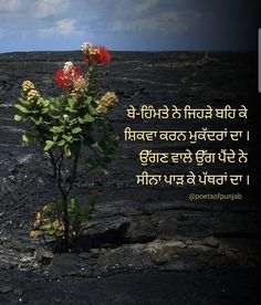 Poet Quotes, Shyari Quotes, Sufi Quotes, True Quotes, Sorry Quotes, Love Quotes Funny, Love Quotes For Him, Punjabi Love Quotes, Indian Quotes