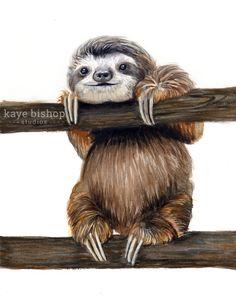 Sloth Watercolor Painting Animal Art Sloth by KayeBishopStudios Cute Baby Sloths, Cute Sloth, Animal Paintings, Animal Drawings, Art Drawings, Indian Paintings, Watercolor Animals, Watercolor Paintings, Abstract Paintings