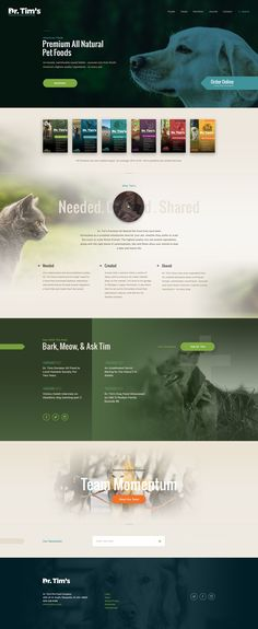 Dr Tim's – Ui design concept for a new website, by Elegant Seagulls.