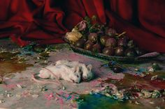 Still Life. David Abrahams