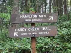 Hamilton Mountain: MORE DIFFICULT = more rewarding!