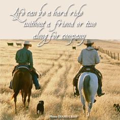 The best friends are those who enjoy long spells of silence together. Country Girl Quotes, Country Girls, Southern Quotes, Girl Sayings, Country Life, Son Quotes, Life Quotes, Baby Quotes, Family Quotes