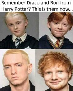 If anyone beleives this its actually eminem and ed sheeran Harry Potter Jokes, Harry Potter Pictures, Harry Potter Fandom, Eminem Funny, Eminem Memes, Eminem Quotes, Tom Felton, Ron Weasley, Dr Who