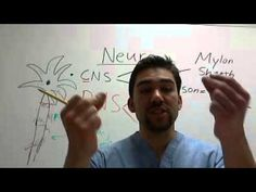 Neuro Basic Over View ( MG vs. ALS) Part 2 - YouTube