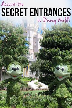 These Secret Entrances to Disney World Parks Will Make You Feel Like a VIP! Saving this one for later – these secret entrances to Disney World are going to save us a ton of time! Viaje A Disney World, Disney World 2017, Disney World Parks, Walt Disney World Vacations, Disney Worlds, Disney Resorts, Disney Secrets, Disney World Tips And Tricks, Disney Tips