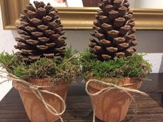 Decorations with cones - advent - - find a . - Decorations with cones – Advent – – find a hobby – - Easy Flower Painting, Acrylic Painting Flowers, Pine Cone Decorations, Christmas Decorations, Handmade Christmas, Christmas Crafts, Front Porch Flowers, Christmas Trees, Xmas