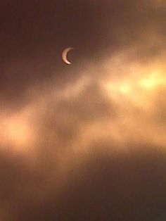 May 20, 2012 Annular Eclipse - Martin Beck / Los Angeles Times (Costa Mesa)
