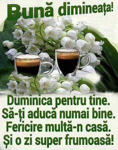 Good Morning Beautiful Flowers, Phonetic Alphabet, Sunday, Facebook, Domingo