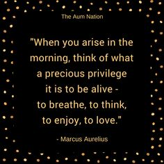 """""""When you arise in the morning, think of what a precious privilege it is to be alive - to breathe, to think, to enjoy, to love."""" - Marcus Aurelius"""