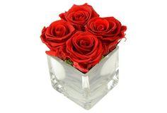 """5"""" Red Rose Arrangement, Preserved"""