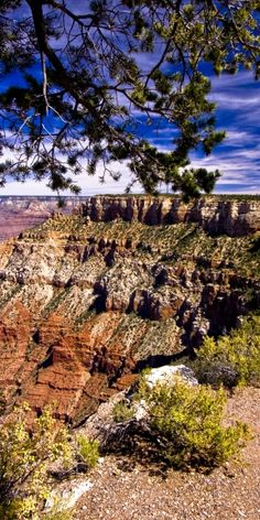 #landscape #scenery