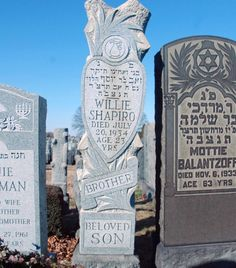 Grave of Murder Inc victim Willie Shapiro, whom they buried alive. The sawed-off tree trunk on the stone is old Jewish gravestone symbolism for a life cut short.