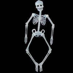 #Valentines #AdoreWe #Trendy Halloween - #Regent Products Corp. Jointed Skeleton Glow in the Dark Prop - AdoreWe.com