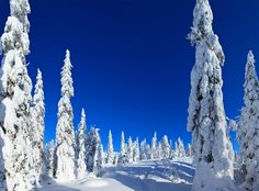 See related links to what you are looking for. Change Image, Finland, Contemporary Design, Norway, Sweden, National Parks, Landscape, Country, Classic