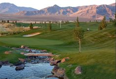 Picturesque, challenging and NEVER dull! Pahrump Nevada, Las Vegas Golf, Golf Holidays, Golf Green, Best Golf Courses, Perfect Golf, Holiday Resort, Golf Humor, Golf Tips