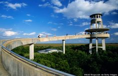 Bike through the Everglades National Park and climb the Shark Valley observation tower in Florida
