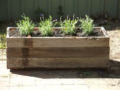 Planter box made from fence palings