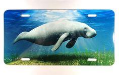 NAUTICAL CUSTOM ART LICENSE FLORIDA MANATEE SEA COW SEA LIFE BLUE OCEAN FISH in Collectibles, Transportation, Automobilia   eBay