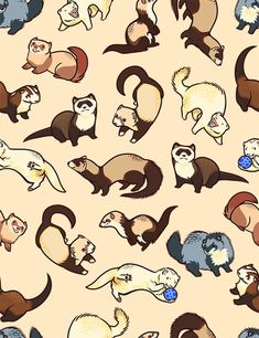 Image about ferret in Hermoso! by Antonella Estèfano - Image about ferret in Hermoso! by Antonella Estèfano - Cute Animal Drawings, Animal Sketches, Kawaii Drawings, Cute Drawings, Art Sketches, Cute Patterns Wallpaper, Cute Wallpaper Backgrounds, Animal Wallpaper, Cute Wallpapers