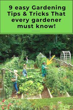 9 AWESOME DIY IDEAS FOR YOUR GARDEN garden ideas, gardening ideas, gardening for beginners, gardening design, gardening tools, gardening hacks, gardening and landscape, gardens and gardening ideas #gardening #gardenhacks #gardeningideas