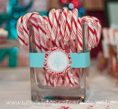 aqua and red candy canes