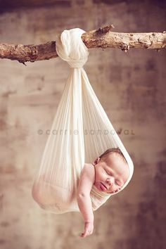 I'm really fascinated with newborn photography.  Things like this just strike me as so sweet and precious.