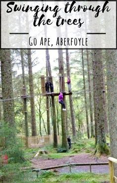 Go Ape Aberfoyle is an adrenaline full day out. With one of the longest zip wires in Scotland, and 30 tree top crossings to tackle you will not be bored!