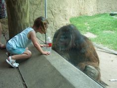 Checking each other out! Taken at Houston Zoo in Texas by K. Wiltshire