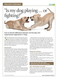 Client handout: Healthy play vs. aggressive play in dogs --dvm360.com